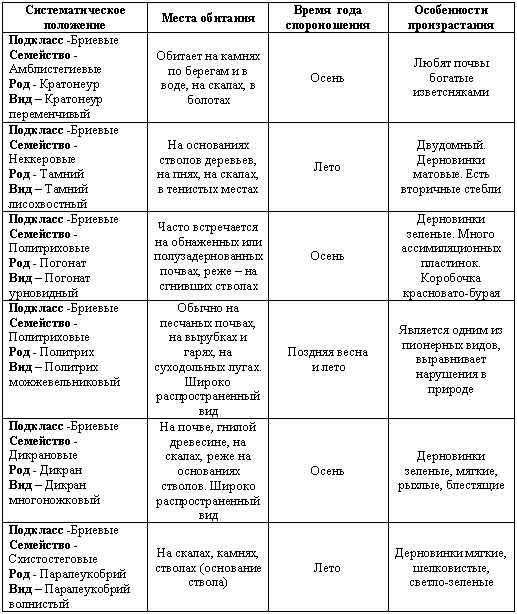Таблица №5.