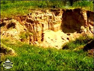 Описание и анализ геологического обнажения