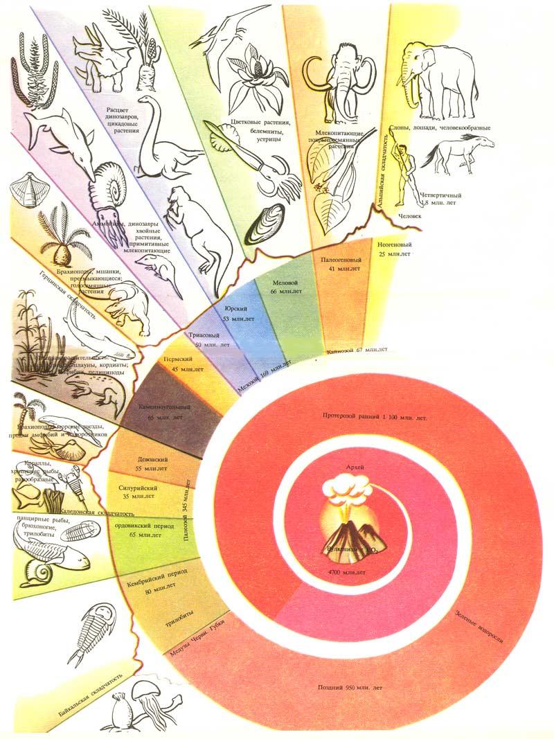 Словарь терминов по физической географии, землеведению, ландшафтоведению для студентов, школьников, учителей и...