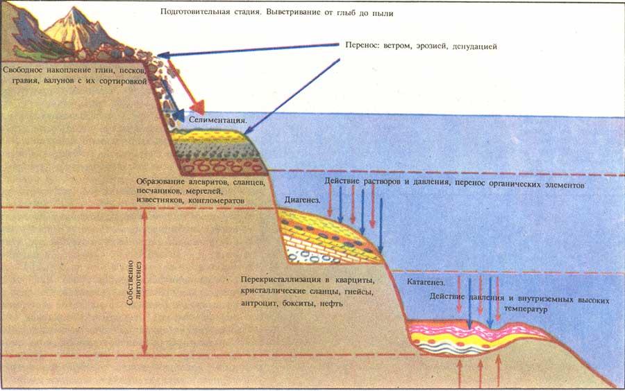 Схема процесса литогенеза