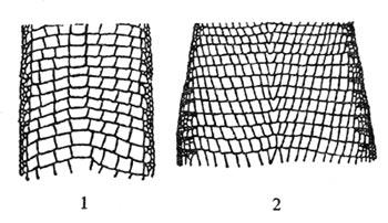 Расположение чешуи на нижней стороне тела: 1 — крапчатой месалины, Mesalina guttulata; 2 — сетчатой ящурки, Eremias grammica.