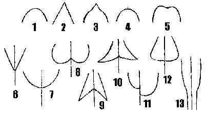 m14.jpg (16317 bytes)