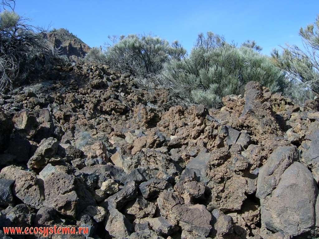 Застывшая лава 2000 летней давности у