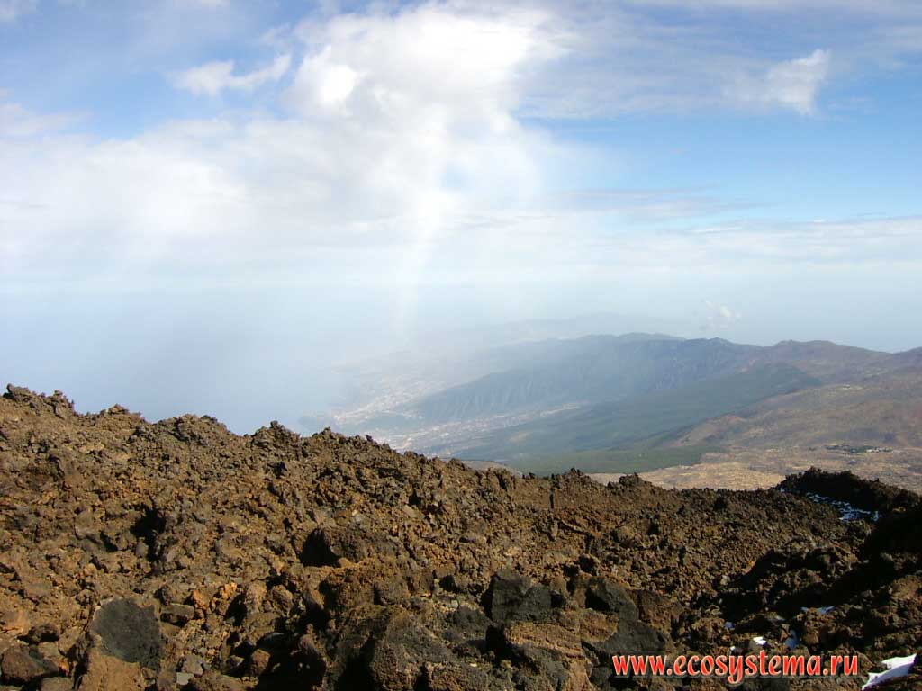 Tenerife Island (Canaries, Spain) natural landscapes and nature objects