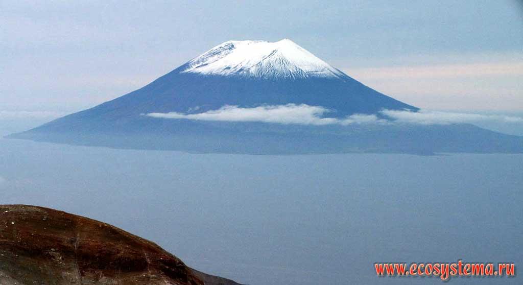 Играть в вулкан на смартфоне Тазовский скачать Вулкан играть на телефон Ачайваям download