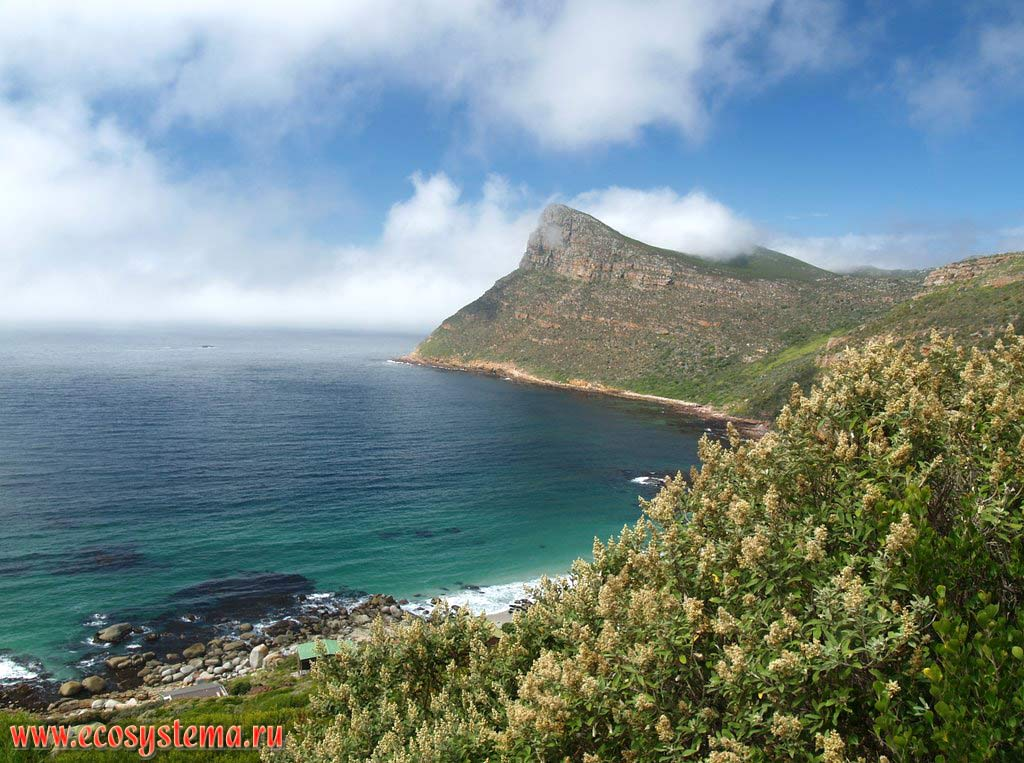 Куэста и залив Атлантического океана на мысе Доброй Надежды (Cape of Good Hope). Южная Африка, Капские горы, южное побережье ЮАР