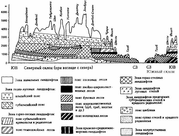 На кавказе выделено 6 типов структур