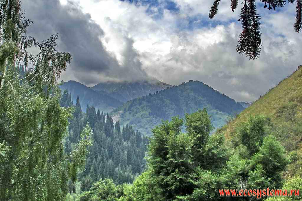 tien shan mountains. Northern Tien-Shan Mountains,