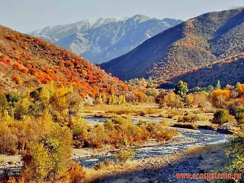 фото горы коми