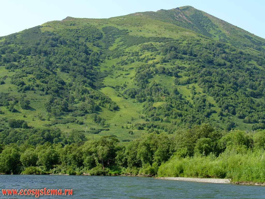 на Западном Кавказе.