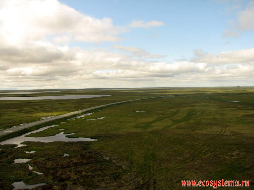 Картинки природа западно сибирская равнина