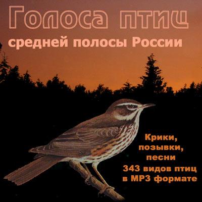 ГОЛОСА ПТИЦ СРЕДНЕЙ ПОЛОСЫ РОССИИ. список видов.  MP3-диск с записями голосов птиц в природе (крики, позывки, песни